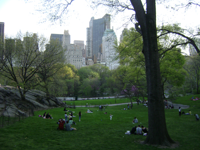 Central park is awesome and like the rest of new york city…very