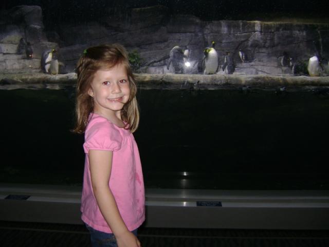 Aquarium Trip 060