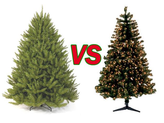 Real Christmas Trees Vs Fake Christmas Trees